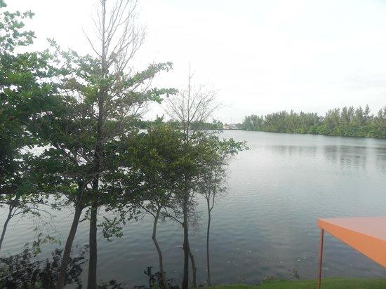 SpringHill Suites Miami Airport South: Vista do lago da janela do quarto