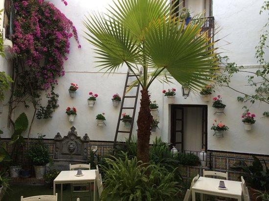 Séneca Hostel: Beautiful!!