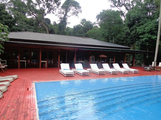 La Cantera Jungle Lodge : pileta