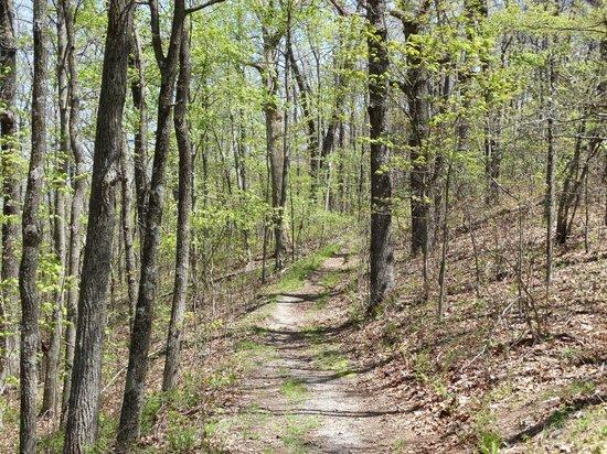 Cumberland Gap National Historical Park: A view down the Ridge Trail