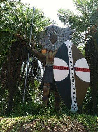 Honolulu Zoo: It's not a surfboard dude!