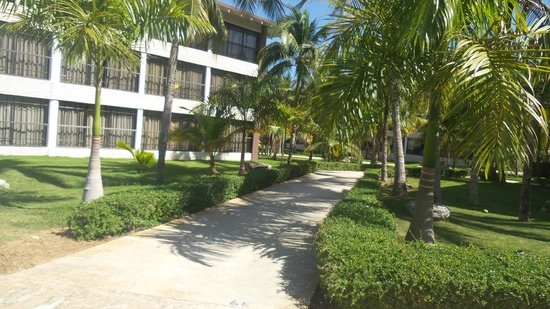 Camino a la playa picture of ifa villas bavaro resort for Villas bavaro