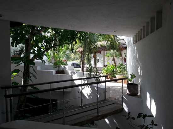 Mi Casa en Cozumel: Coutryard