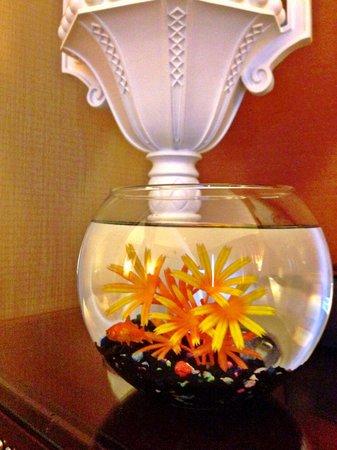 Kimpton Hotel Monaco Denver : our goldfish