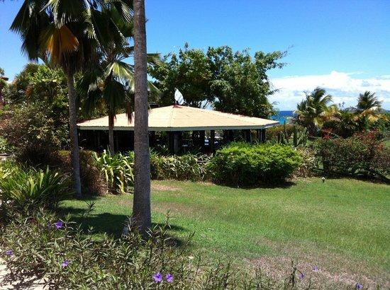 Blue Horizon Boutique Resort : resort