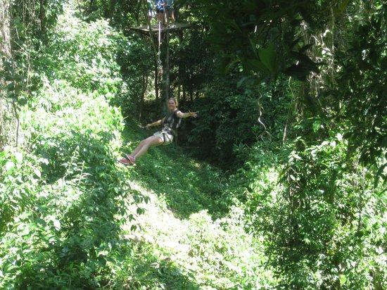 Jungle Top Zipline Adventure: zip lining