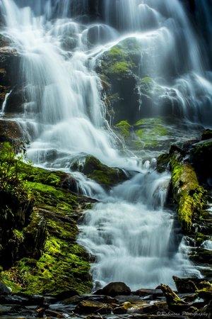 Misty Mountain Ranch : Mingo falls