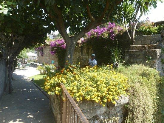 Hotel Artemide: Gardens in Hotel