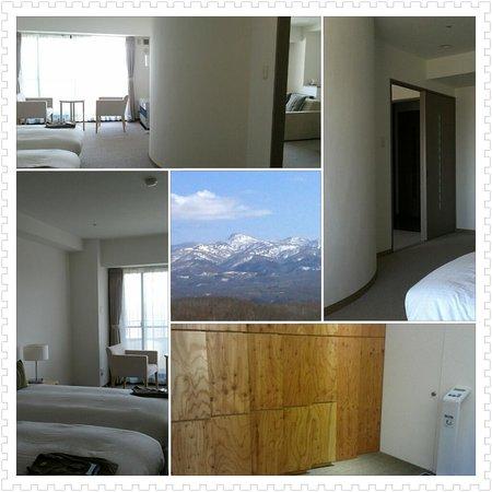 One Niseko Resort Towers : 一見きれいに見える部屋