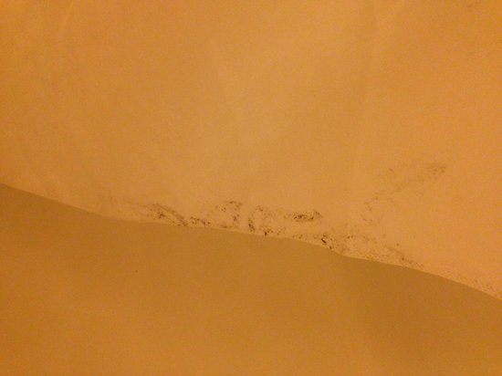 Hilton Garden Inn Pensacola Airport -Medical Center: Moldy shower curtain