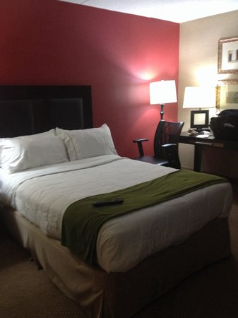 Holiday Inn Express Charleston - Civic Center: Very comfortable for a queen size bed