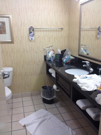 Holiday Inn Express Charleston - Civic Center: Big bathroom but tile was either cracked or dirty.  Also toilet paper was far away to reach from