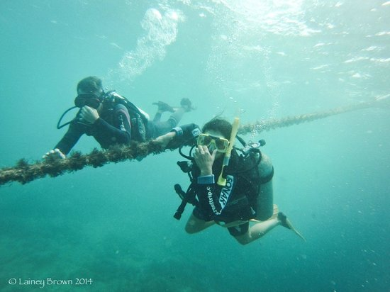 Reef Experience: My super patient and awesome dive instructor keeping me calm.  So grateful for his help!