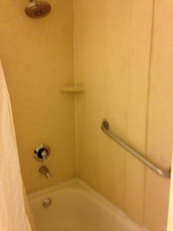 Best Western Plus Gateway Hotel Santa Monica: bathtub