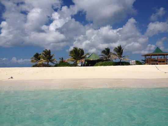 Sandy Island : Arrival into paradise