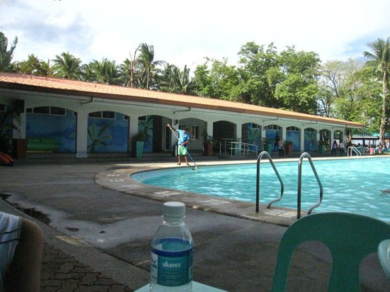 Island Cove Hotel and Leisure Park: Attendant removing leaves from the pool
