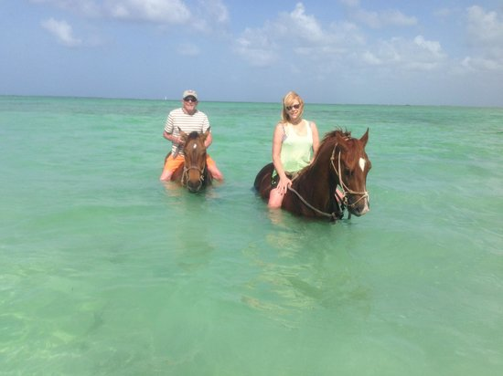 Morritts Tortuga Club and Resort : Swimming with the horses