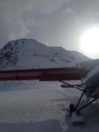 Talkeetna Air Taxi: Landing site