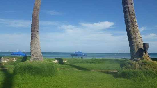 Hotel Tamarindo Diria : View from the grassed lounger area