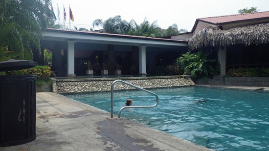 Hotel Tamarindo Diria : Beachside smaller pool