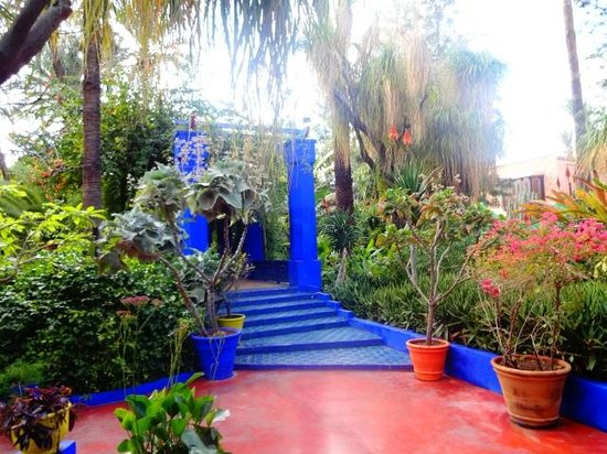 cafe jardin majorelle marrakech os jardins - Jardin Marrakech