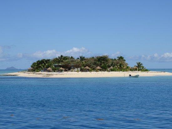 Captain Cook Cruises : Tivua Island