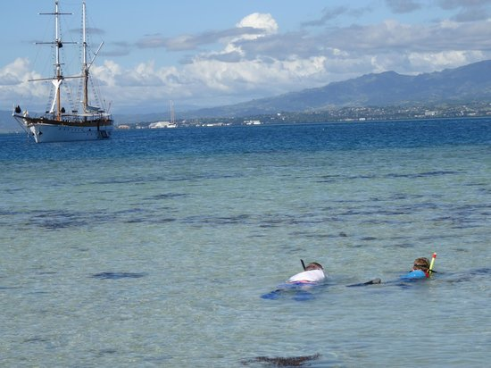 Captain Cook Cruises : Snorkling off the island