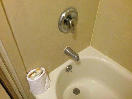 Quality Suites Lake Buena Vista : Detalhe do banheiro