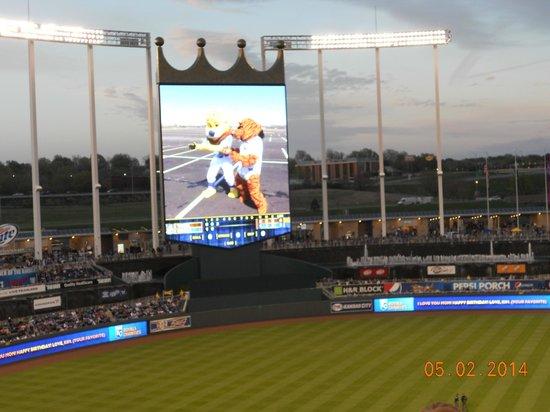 Kauffman Stadium : large crown screen