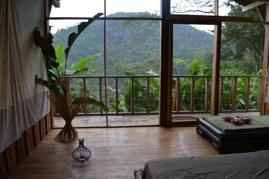 Pacuare Outdoor Center: view from inside my room