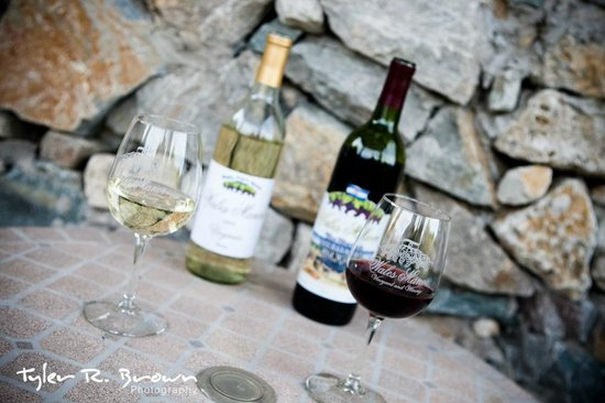 Wales Manor Vineyard & Winery: First Commercial Winery in Collin County