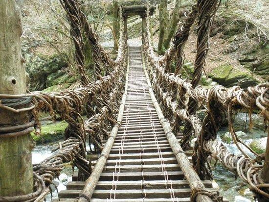 Okuiya Niju Kazurabashi Bridge: 男橋