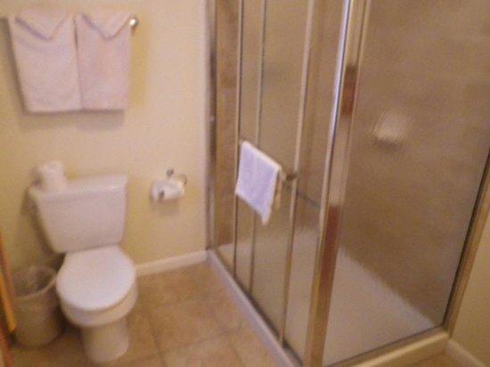 Madison Avenue Beach Club Motel: shower