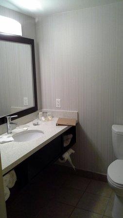 Hilton Garden Inn Valencia Six Flags: Bathroom