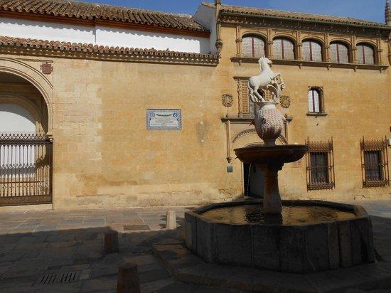 Museo de Julio Romero de Torres: Площадь жеребенка