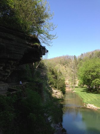 Dogwood Canyon Nature Park: Great view