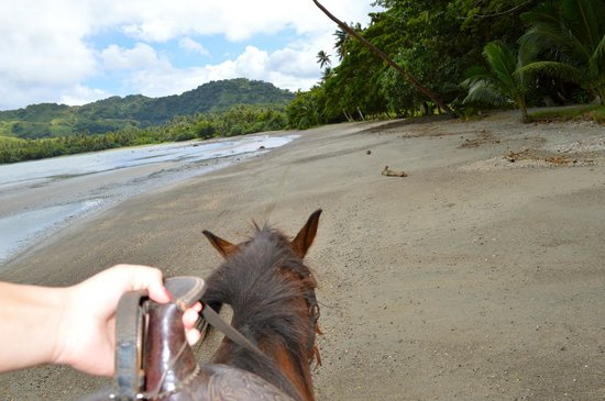 Namale Resort & Spa: View horseback riding!