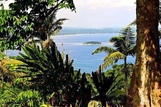 The Summit Gardens Vanuatu: View from Summit Gardens