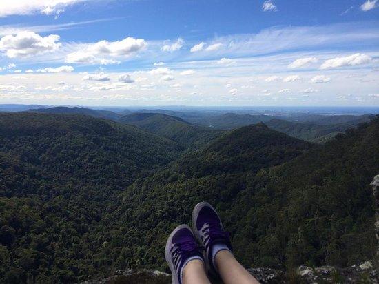Springbrook National Park: Goomoolahra Picnic Ground view