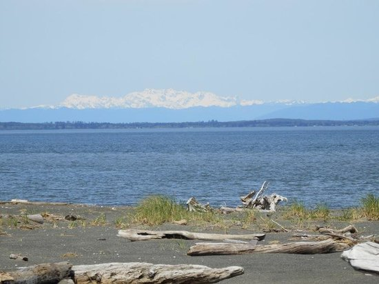 Damon Point: View of Olympic Mountain range from the sand spit
