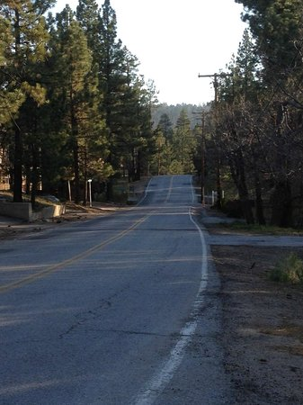 Hillcrest Lodge: Road in back of property …