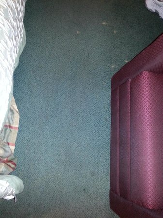Ramada Portland Airport: Carpet needs replacing