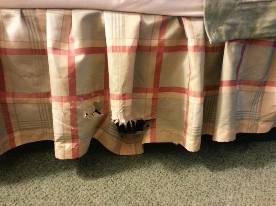 Ramada Portland Airport: Something chewed on the bed ruffle