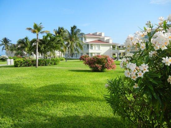 Moon Palace Cancun: Tucan Terrace area of Nizuc
