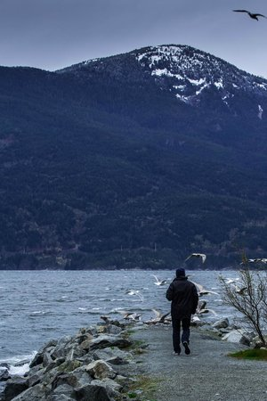 Porteau Cove Provincial Park : walking up to segulls