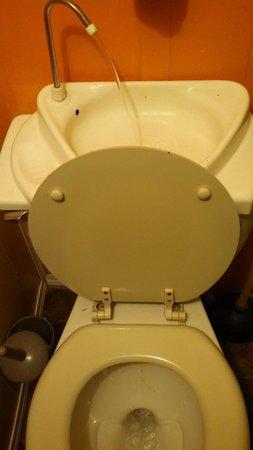 Beez Kneez Bakpakers: Clever toilet setup