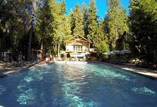 Evergreen Lodge at Yosemite: The pool