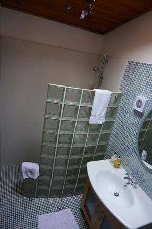 Pearse Lodge B&B: beech room bathroom