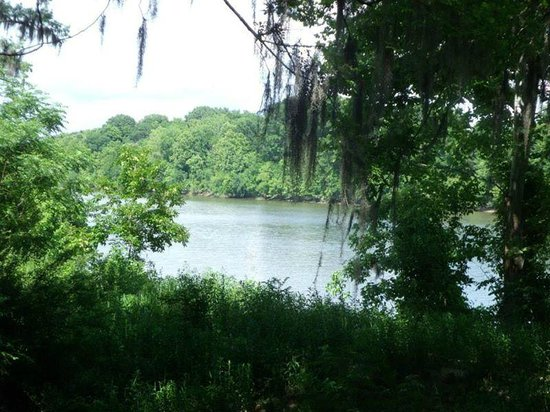 Old Cahawba Archaeological Park : The river