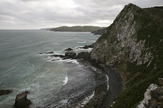 Nugget Point : View from the viewpoint